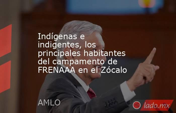 Indígenas e indigentes, los principales habitantes del campamento de FRENAAA en el Zócalo. Noticias en tiempo real