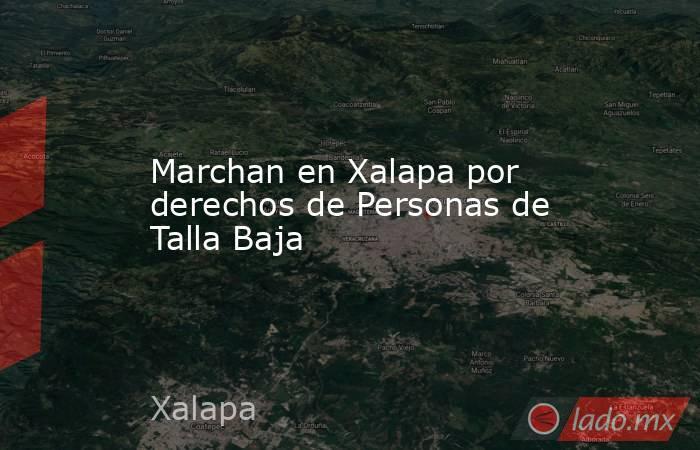 Marchan en Xalapa por derechos de Personas de Talla Baja. Noticias en tiempo real