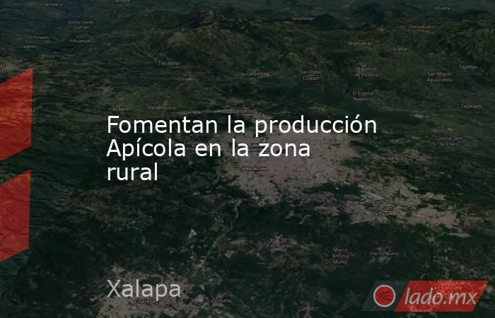 Fomentan la producción Apícola en la zona rural. Noticias en tiempo real
