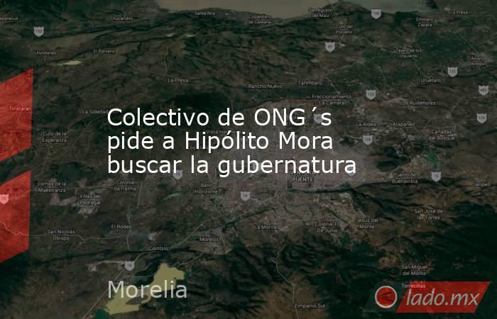 Colectivo de ONG´s pide a Hipólito Mora buscar la gubernatura. Noticias en tiempo real