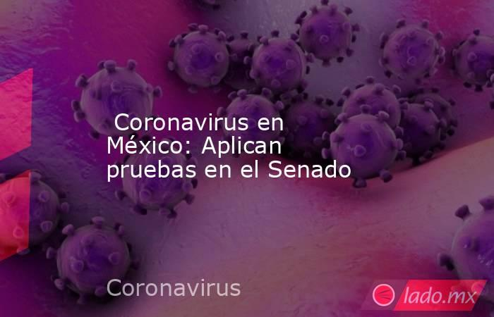 Coronavirus en México: Aplican pruebas en el Senado. Noticias en tiempo real