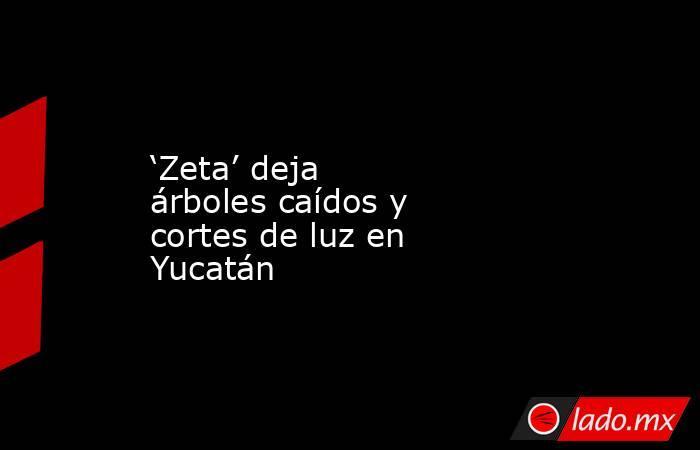 'Zeta' deja árboles caídos y cortes de luz en Yucatán. Noticias en tiempo real