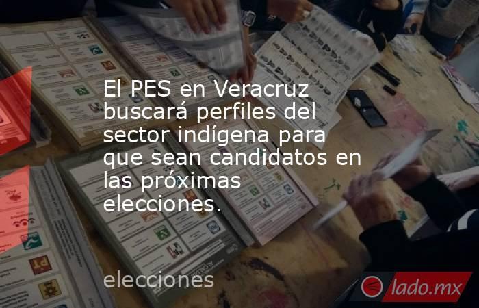 El PES en Veracruz buscará perfiles del sector indígena para que sean candidatos en las próximas elecciones.. Noticias en tiempo real
