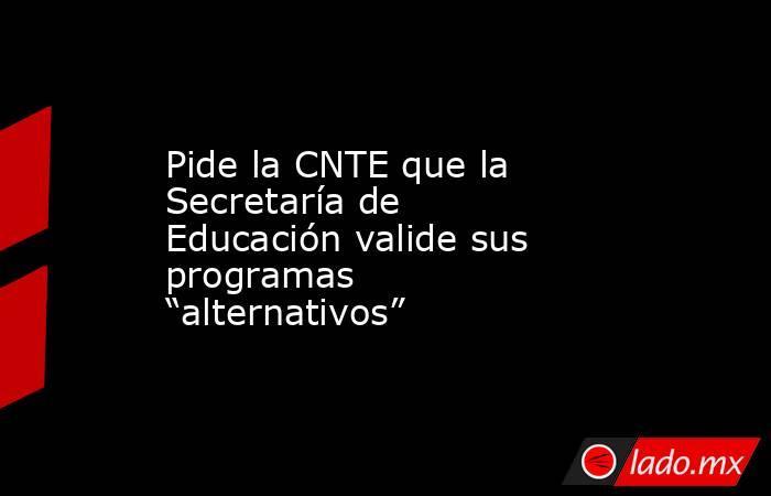 """Pide la CNTE que la Secretaría de Educación valide sus programas """"alternativos"""". Noticias en tiempo real"""