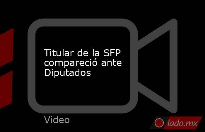 Titular de la SFP compareció ante Diputados. Noticias en tiempo real