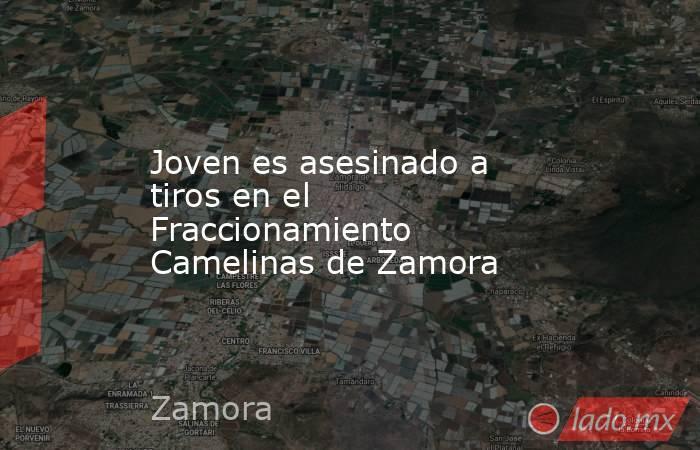 Joven es asesinado a tiros en el Fraccionamiento Camelinas de Zamora. Noticias en tiempo real