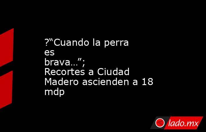 """?""""Cuando la perra es brava…""""; Recortes a Ciudad Madero ascienden a 18 mdp. Noticias en tiempo real"""