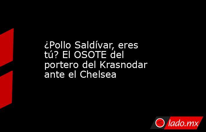 ¿Pollo Saldívar, eres tú? El OSOTE del portero del Krasnodar ante el Chelsea. Noticias en tiempo real