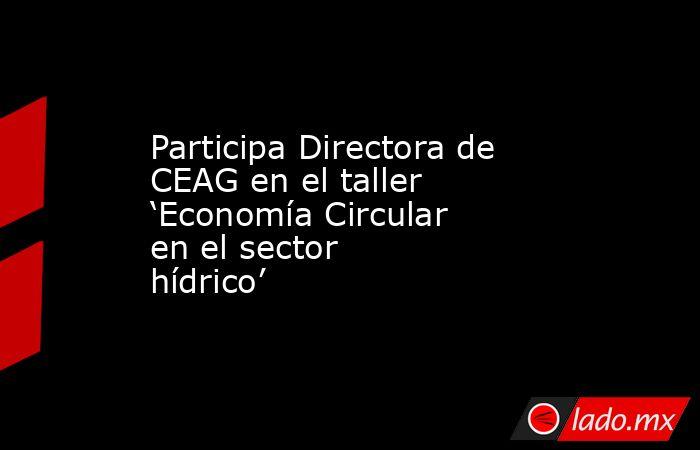 Participa Directora de CEAG en el taller 'Economía Circular en el sector hídrico'. Noticias en tiempo real