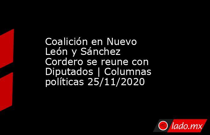 Coalición en Nuevo León y Sánchez Cordero se reune con Diputados | Columnas políticas 25/11/2020. Noticias en tiempo real