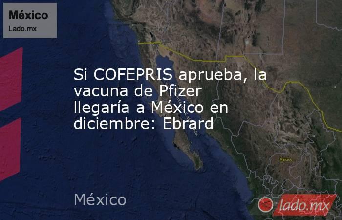 Si COFEPRIS aprueba, la vacuna de Pfizer llegaría a México en diciembre: Ebrard. Noticias en tiempo real