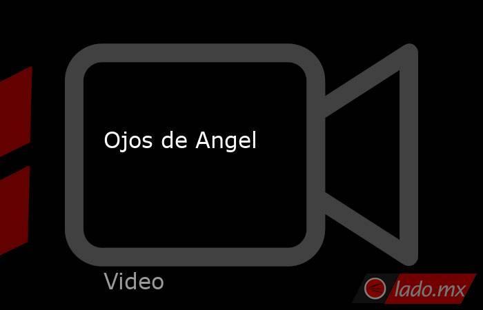 Ojos de Angel. Noticias en tiempo real