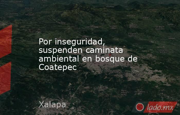 Por inseguridad, suspenden caminata ambiental en bosque de Coatepec. Noticias en tiempo real