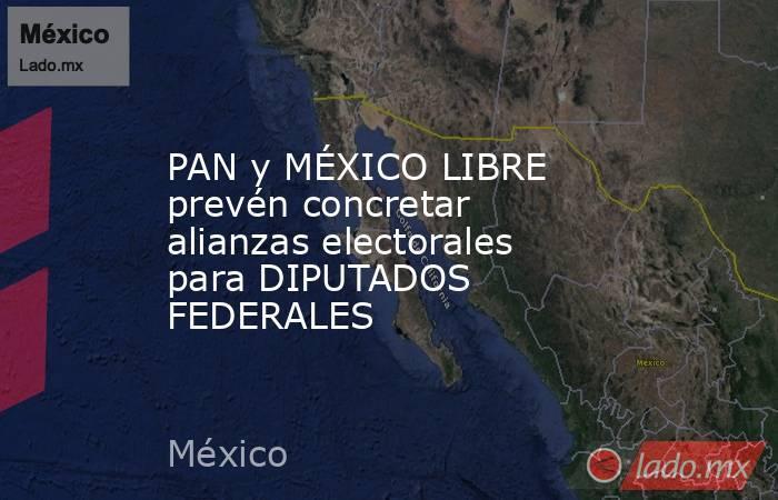 PAN y MÉXICO LIBRE prevén concretar alianzas electorales para DIPUTADOS FEDERALES. Noticias en tiempo real