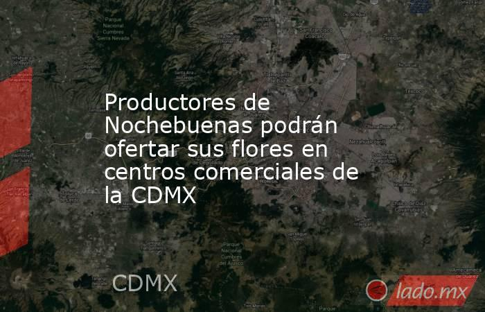 Productores de Nochebuenas podrán ofertar sus flores en centros comerciales de la CDMX. Noticias en tiempo real
