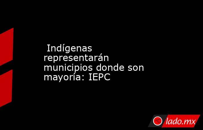 Indígenas representarán municipios donde son mayoría: IEPC. Noticias en tiempo real