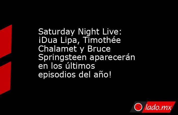 Saturday Night Live: ¡Dua Lipa, Timothée Chalamet y Bruce Springsteen aparecerán en los últimos episodios del año!. Noticias en tiempo real