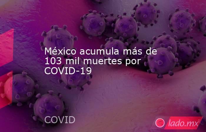 México acumula más de 103 mil muertes por COVID-19. Noticias en tiempo real