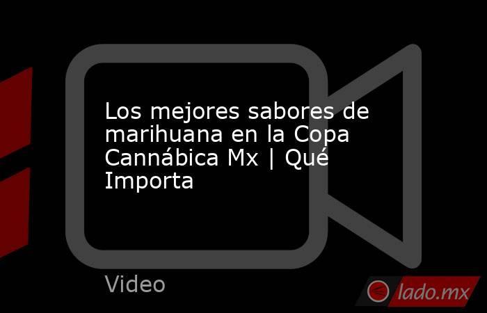 Los mejores sabores de marihuana en la Copa Cannábica Mx | Qué Importa. Noticias en tiempo real