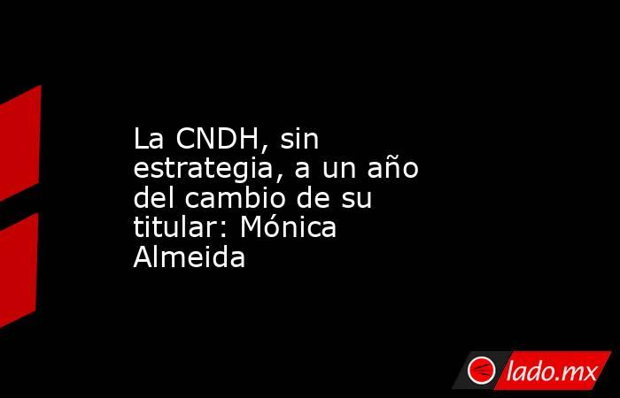 La CNDH, sin estrategia, a un año del cambio de su titular: Mónica Almeida. Noticias en tiempo real