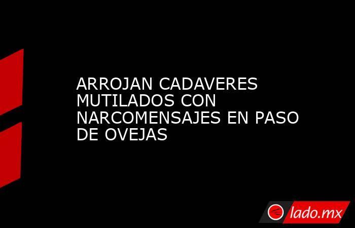 ARROJAN CADAVERES MUTILADOS CON NARCOMENSAJES EN PASO DE OVEJAS. Noticias en tiempo real