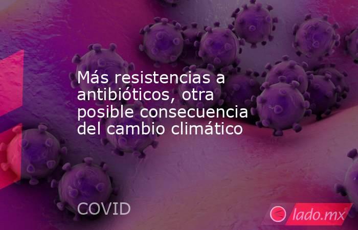 Más resistencias a antibióticos, otra posible consecuencia del cambio climático. Noticias en tiempo real