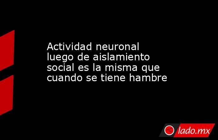 Actividad neuronal luego de aislamiento social es la misma que cuando se tiene hambre. Noticias en tiempo real