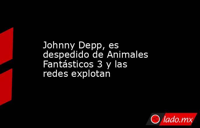 Johnny Depp, es despedido de Animales Fantásticos 3 y las redes explotan. Noticias en tiempo real