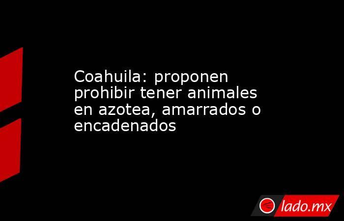 Coahuila: proponen prohibir tener animales en azotea, amarrados o encadenados. Noticias en tiempo real