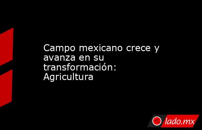 Campo mexicano crece y avanza en su transformación: Agricultura. Noticias en tiempo real