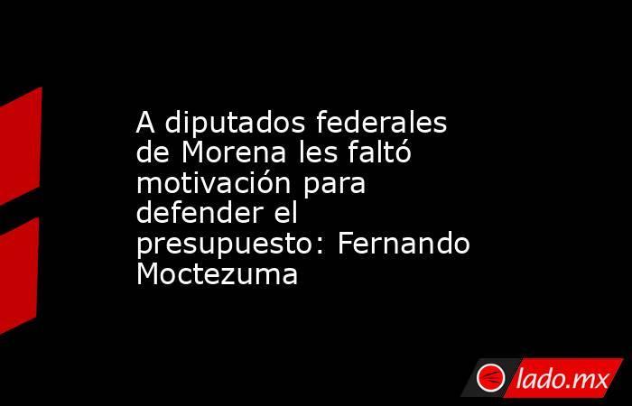 A diputados federales de Morena les faltó motivación para defender el presupuesto: Fernando Moctezuma. Noticias en tiempo real