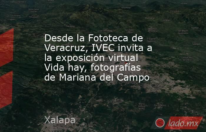 Desde la Fototeca de Veracruz, IVEC invita a la exposición virtual Vida hay, fotografías de Mariana del Campo. Noticias en tiempo real