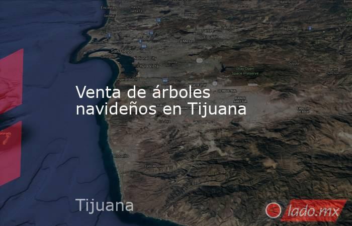 Venta de árboles navideños en Tijuana. Noticias en tiempo real