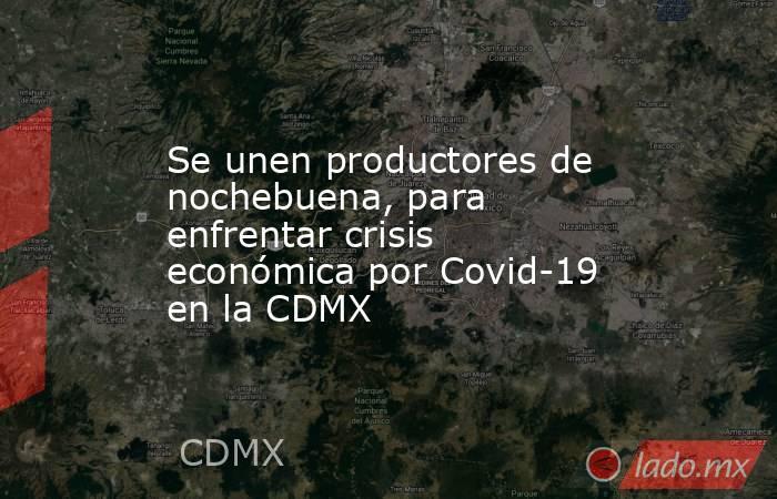 Se unen productores de nochebuena, para enfrentar crisis económica por Covid-19 en la CDMX. Noticias en tiempo real