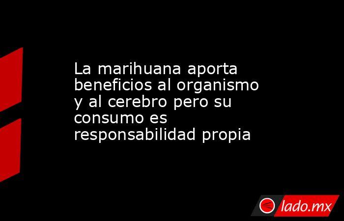La marihuana aporta beneficios al organismo y al cerebro pero su consumo es responsabilidad propia. Noticias en tiempo real