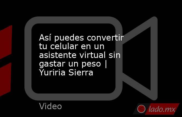 Así puedes convertir tu celular en un asistente virtual sin gastar un peso | Yuriria Sierra. Noticias en tiempo real