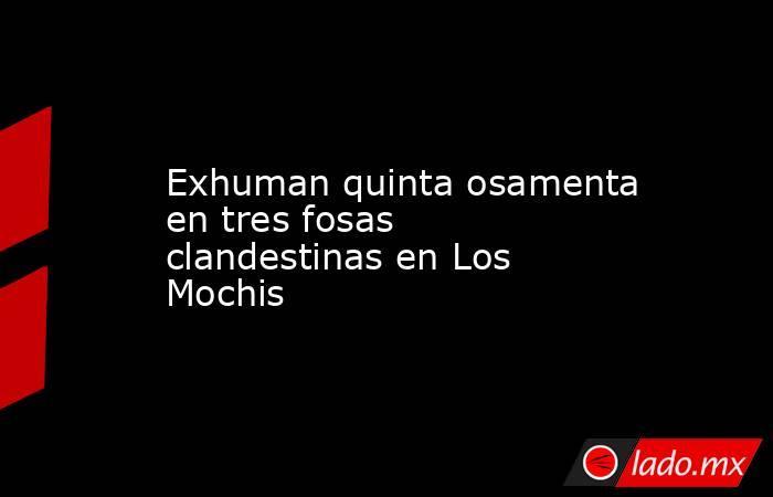 Exhuman quinta osamenta en tres fosas clandestinas en Los Mochis. Noticias en tiempo real