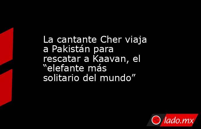 """La cantante Cher viaja a Pakistán para rescatar a Kaavan, el """"elefante más solitario del mundo"""". Noticias en tiempo real"""