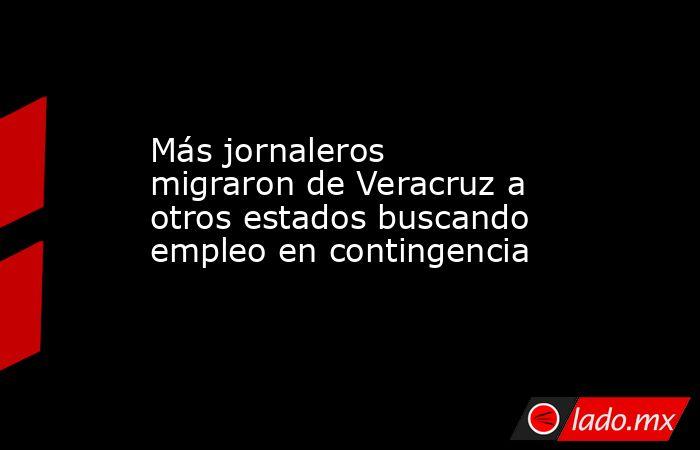 Más jornaleros migraron de Veracruz a otros estados buscando empleo en contingencia. Noticias en tiempo real