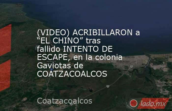 """(VIDEO) ACRIBILLARON a """"EL CHINO"""" tras fallido INTENTO DE ESCAPE, en la colonia Gaviotas de COATZACOALCOS. Noticias en tiempo real"""