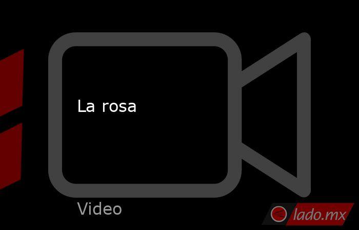 La rosa. Noticias en tiempo real