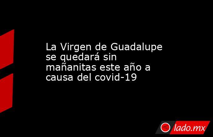 La Virgen de Guadalupe se quedará sin mañanitas este año a causa del covid-19. Noticias en tiempo real