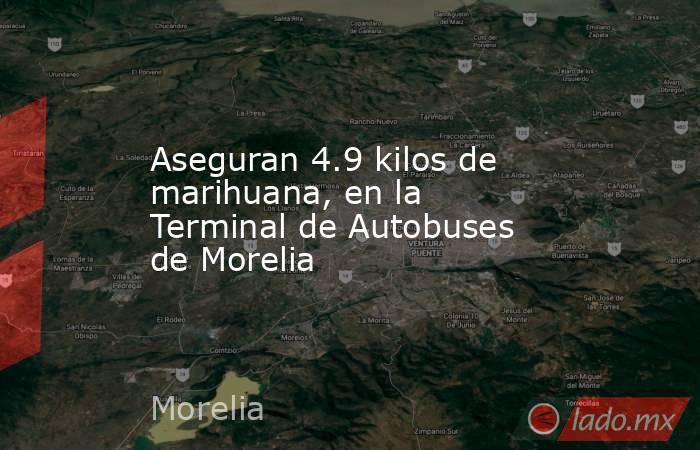 Aseguran 4.9 kilos de marihuana, en la Terminal de Autobuses de Morelia. Noticias en tiempo real