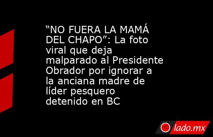 """""""NO FUERA LA MAMÁ DEL CHAPO"""": La foto viral que deja malparado al Presidente Obrador por ignorar a la anciana madre de líder pesquero detenido en BC. Noticias en tiempo real"""