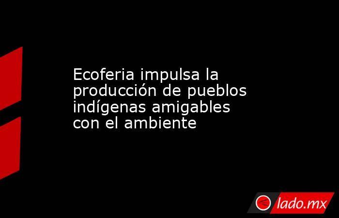 Ecoferia impulsa la producción de pueblos indígenas amigables con el ambiente. Noticias en tiempo real
