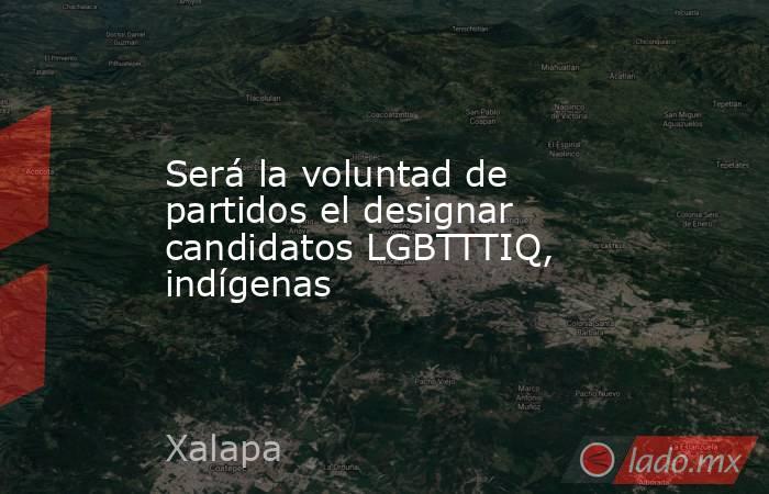 Será la voluntad de partidos el designar candidatos LGBTTTIQ, indígenas. Noticias en tiempo real