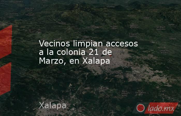 Vecinos limpian accesos a la colonia 21 de Marzo, en Xalapa. Noticias en tiempo real