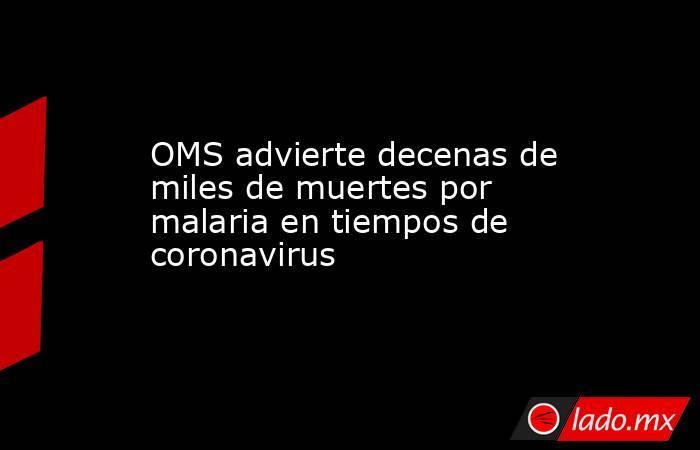 OMS advierte decenas de miles de muertes por malaria en tiempos de coronavirus. Noticias en tiempo real
