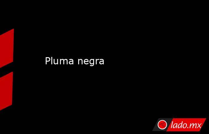 Pluma negra. Noticias en tiempo real