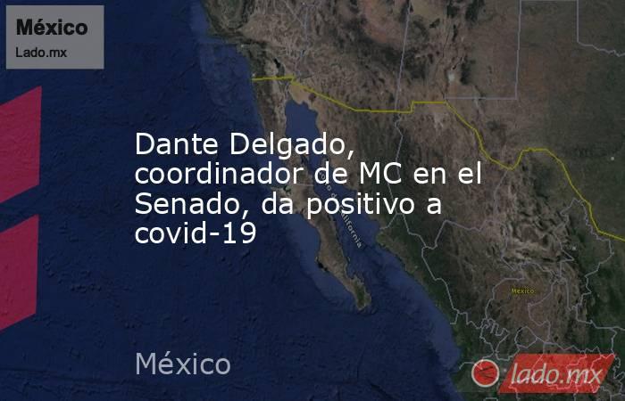 Dante Delgado, coordinador de MC en el Senado, da positivo a covid-19. Noticias en tiempo real